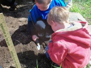 Small World gardening May 9 2011 010